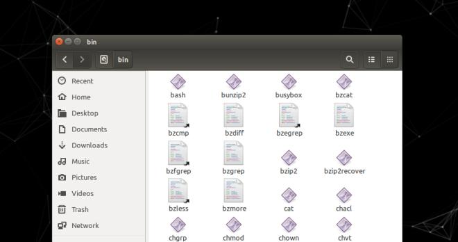 Linux Directory bin