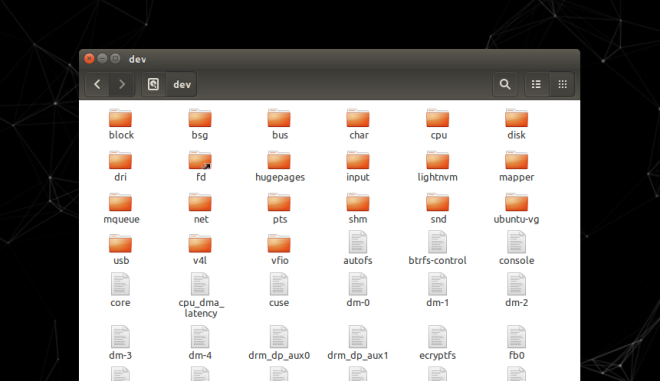 Linux Directory dev